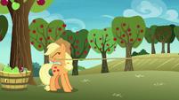 Applejack catches Rainbow Dash off-screen S8E5