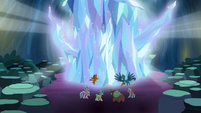 Giant mass of crystal grows before Young Six S9E3