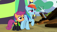"""Rainbow """"wouldn't have it any other way!"""" S8E20"""