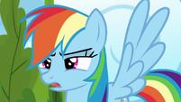 """Rainbow Dash """"nopony else is here"""" S6E7"""