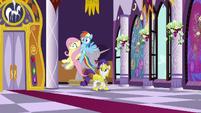 Rainbow and Fluttershy enter castle corridor S9E4