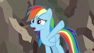 S07E18 Rainbow tłumaczy czyny Dzielnej Do