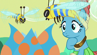 Meadowbrook notices flash bees appearing S7E20