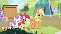 Sweetie Belle, Apple Bloom and Applejack walking together S2E05