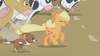 Applejack and winona S01E04