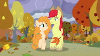 Bright Mac and Pear Butter walking in fall S7E13