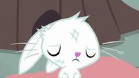 Bunny Fluttershy nodding to Angel S9E18