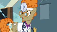 """Dr. Horse """"except, of course, its symptoms"""" S7E20"""