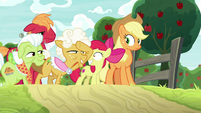 Goldie looking out at the field of patterns S9E10