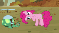 """Pinkie """"look at the cute wittle Tankie"""" S5E5"""