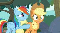 "Rainbow Dash ""right, Applejack?"" S8E9"