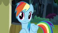 Rainbow Dash listening to Pinkie Pie S7E18