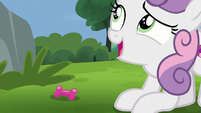 Sweetie Belle -that might be your problem- S7E6