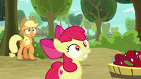 AJ and Apple Bloom watch trap go off S9E10
