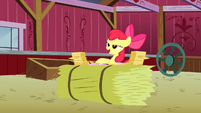 Apple Bloom looking at all the RVSP S3E8