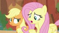 """Fluttershy """"what foal's-breath looks like?!"""" S8E23"""