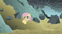 Fluttershy in a pile of dirt S1E07