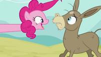 Pinkie Pie surprising a bald Cranky S2E18