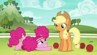 Pinkie looking overwhelmed at Applejack S6E18