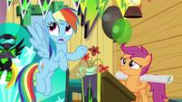 "Rainbow Dash ""sure it sounds weird"" S8E20"