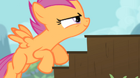 Scootaloo climbing up stairs 3 S4E05