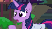Twilight Sparkle asking for more details S9E5