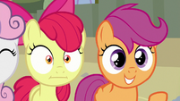 Apple Bloom stunned by Scootaloo's comment S8E6