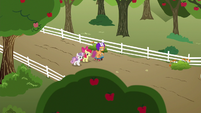 Cutie Mark Crusaders walk to their clubhouse S6E19