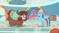 Rainbow rears up on her hind hooves S9E7