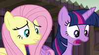 """Twilight Sparkle """"but you could be!"""" S5E23"""