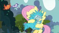 Fluttershy hugging a puckwudgie S8E2