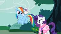 Opal on Rainbow Dash's back S1E14