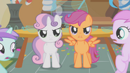 S01E12 Sweetie i Scootalo stają obronie Apple Bloom