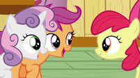 "Scootaloo and Sweetie Belle ""Sure am!"" S6E4"