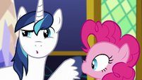 Shining Armor plugs Pinkie Pie's mouth S5E19