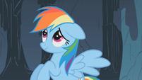 Rainbow Dash apologizes to dragon S01E07