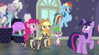 Rainbow Dash complimenting Fluttershy S8E4