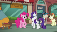 """Rarity """"until you actually get a pouch for Maud"""" S6E3"""