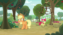 Apple Bloom excited about her cage trap S9E10