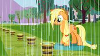 Applejack getting rained on S3E8