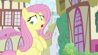 """Fluttershy-Angel """"hang on, hold up!"""" S9E18"""
