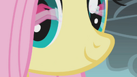 Fluttershy watches Pinkie jump over the cliff S1E07