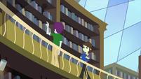 Indigo Wreath and Sophisticata on library second level EG3