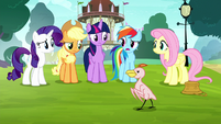 Rainbow -talking about the same thing- S8E18
