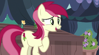 Rose impressed by Rarity's new look S7E19