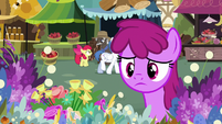 Berryshine approaching the flower stand S7E19