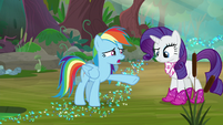 """Rainbow """"out of the Wonderbolts for weeks"""" S8E17"""
