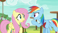 """Rainbow """"you totally gotta get this drill down!"""" S6E18"""