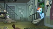 Rainbow Dash walking into Daring's house S4E04