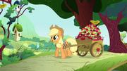 S01E10 Applejack przywiozła wóz jabłek dla Fluttershy.png